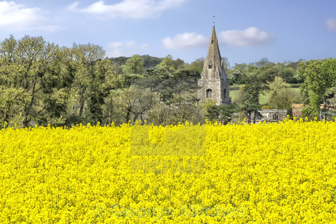 """Village Church at Broughton, Huntingdon, Cambridgeshire"" stock image"