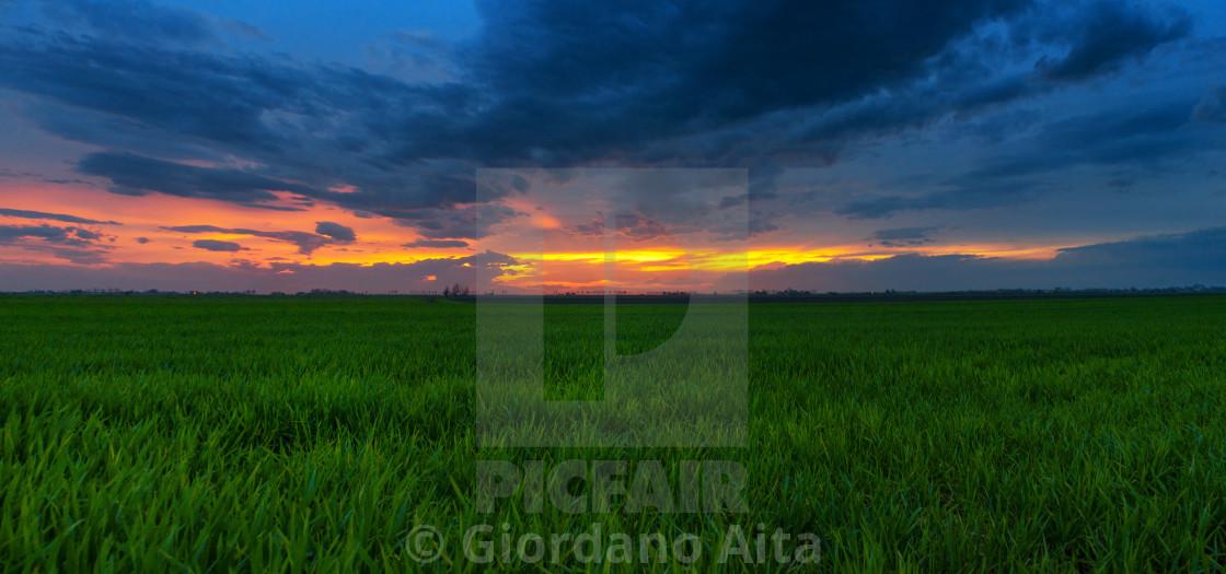 """Sunset panorama"" stock image"