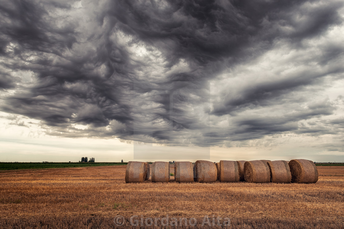 """""""Bales of hay"""" stock image"""