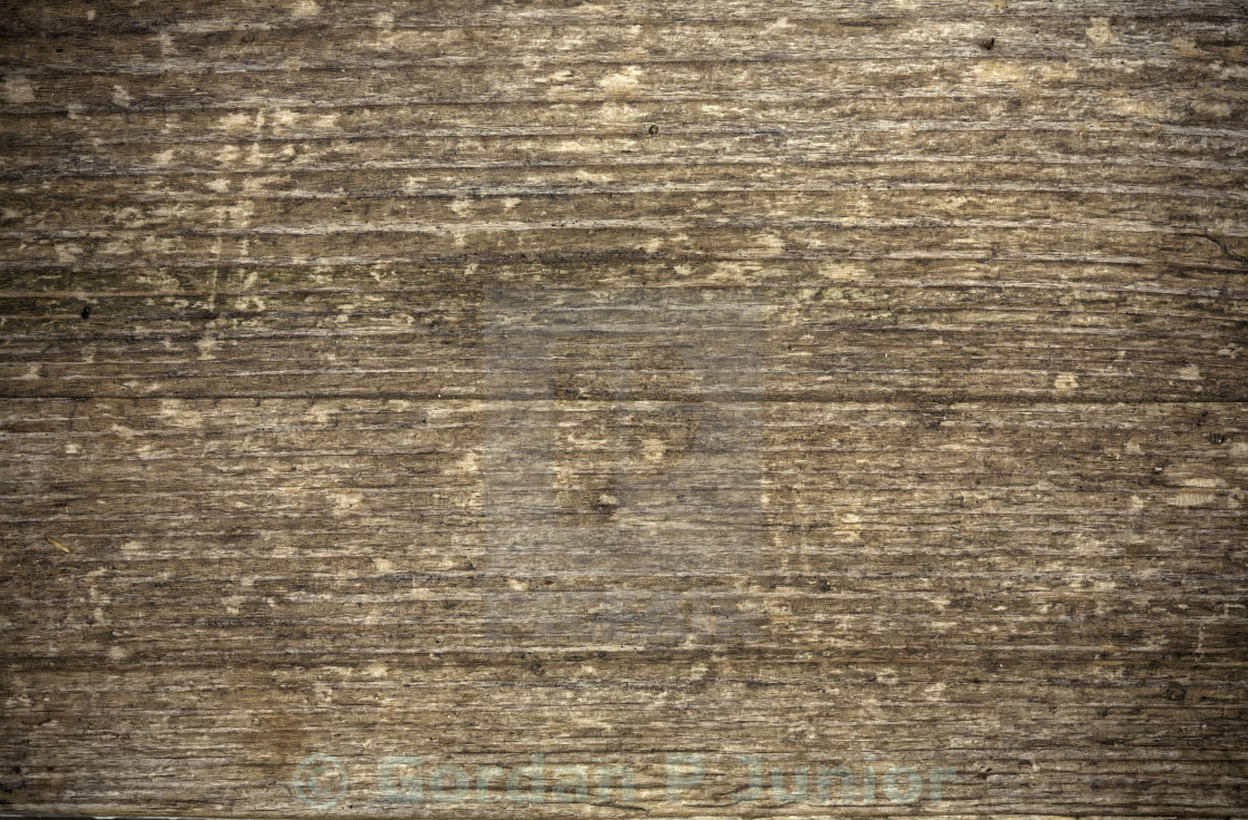 """Wood texture"" stock image"