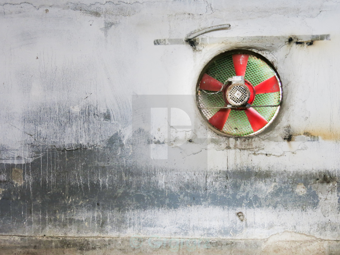 """fan"" stock image"