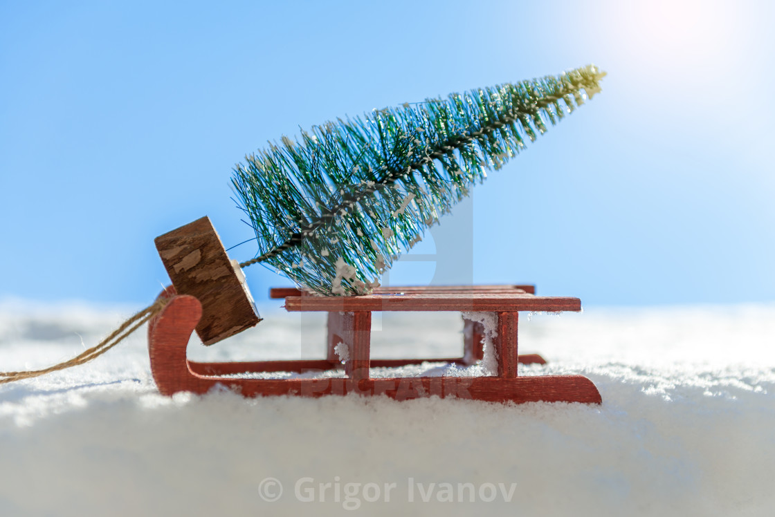 """""""Red sled carrying a pine tree"""" stock image"""