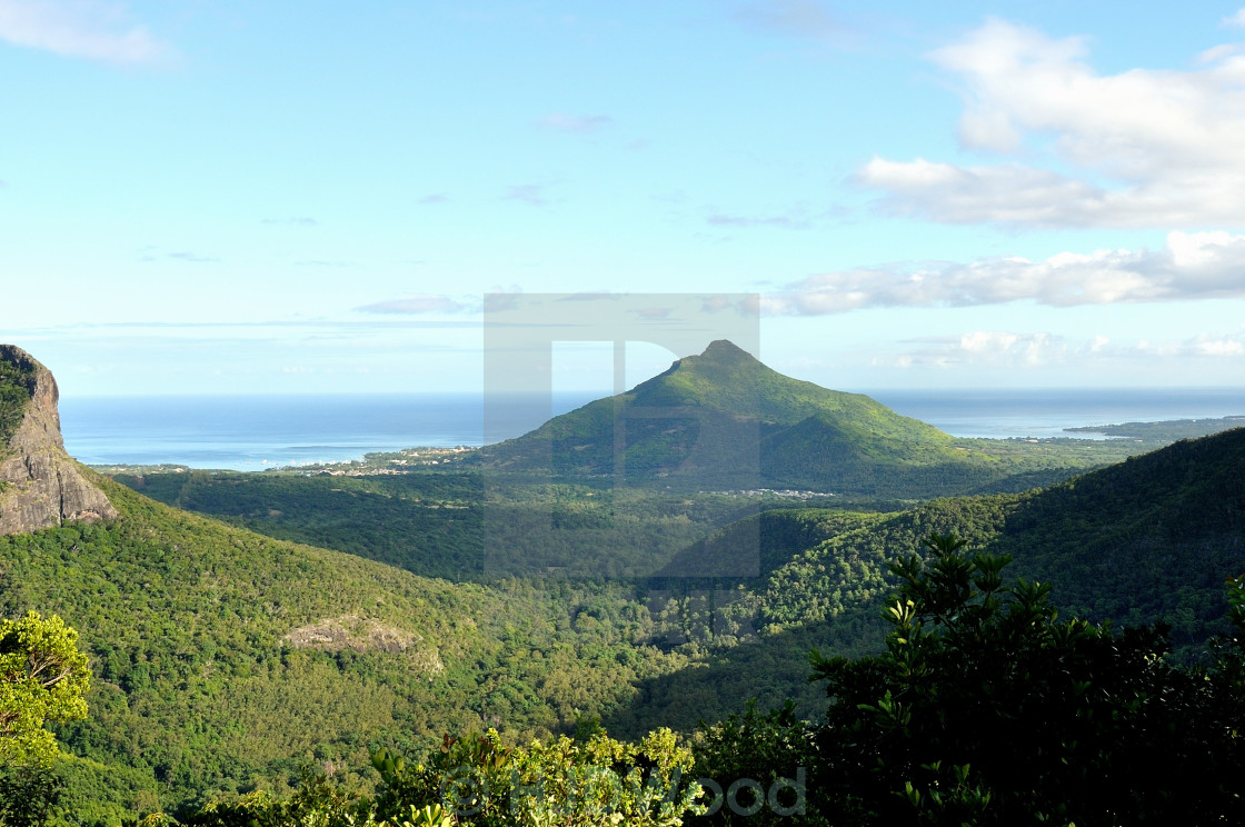 """""""The Black River Gorges, Mauritius"""" stock image"""