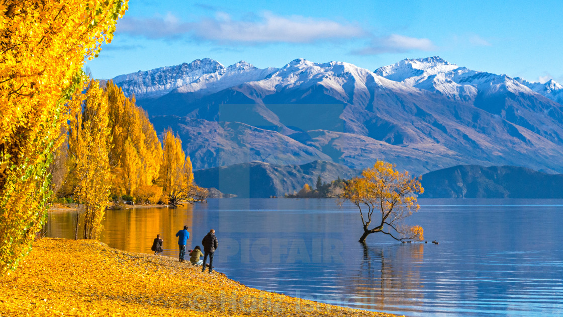 """Tourist visiting Lake Wanaka, New Zealand in Autumn season"" stock image"