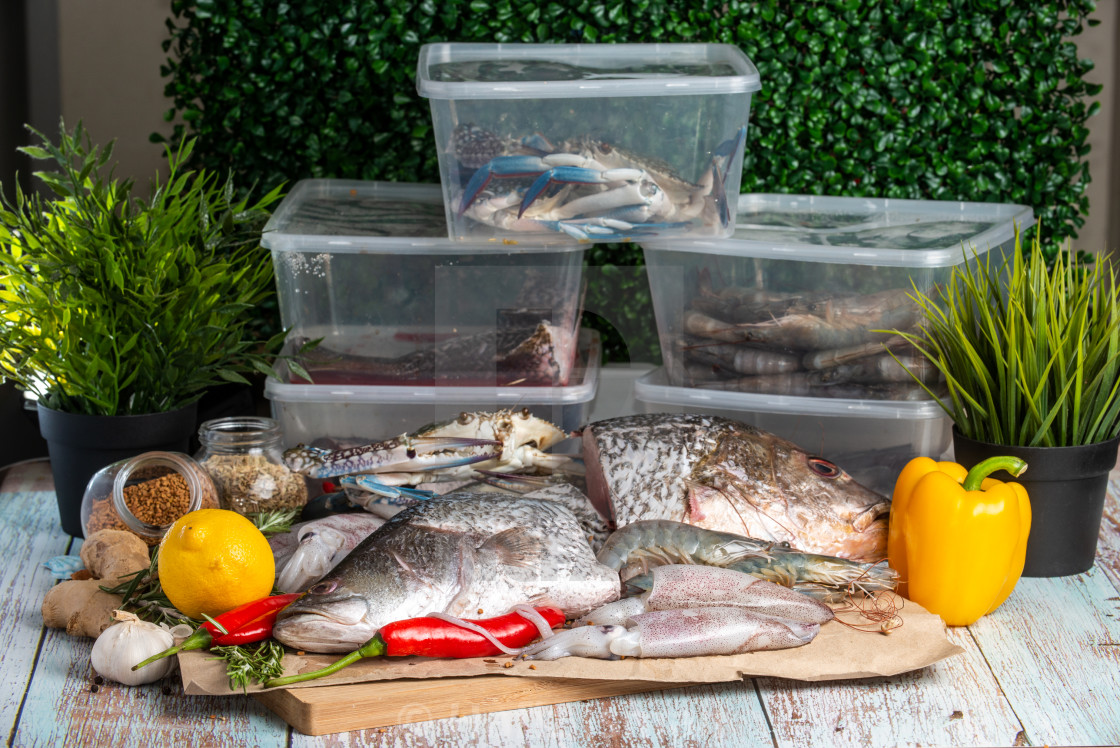"""""""Fresh Seafood - Golden Snapper, Sea Bass, Prawns, Crabs, and Squids - on a..."""" stock image"""