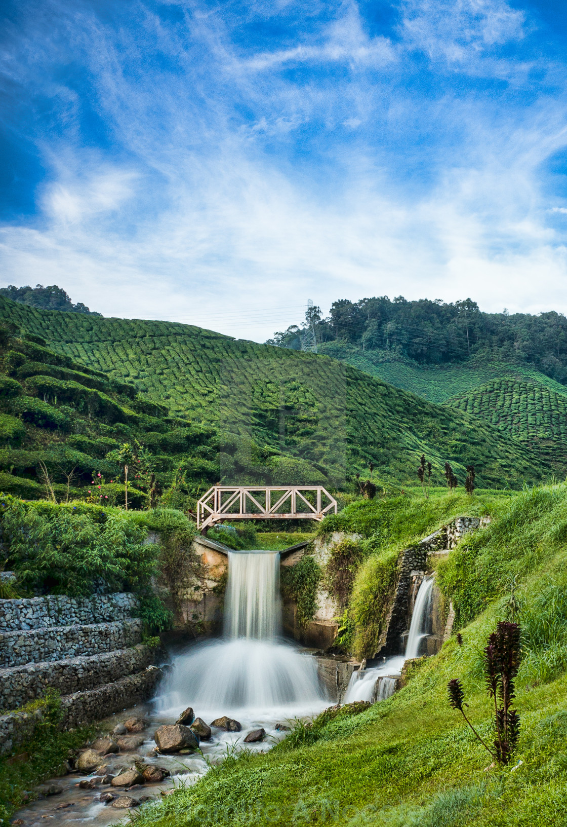 """Bharat Tea Farm water falls"" stock image"