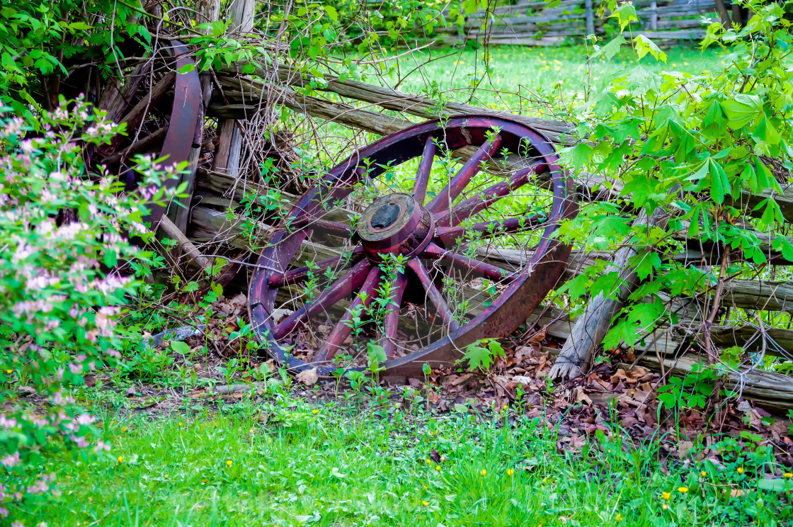 Old Wagon Wheel Against A Wooden Fence License Download Or Print For 12 40 Photos Picfair