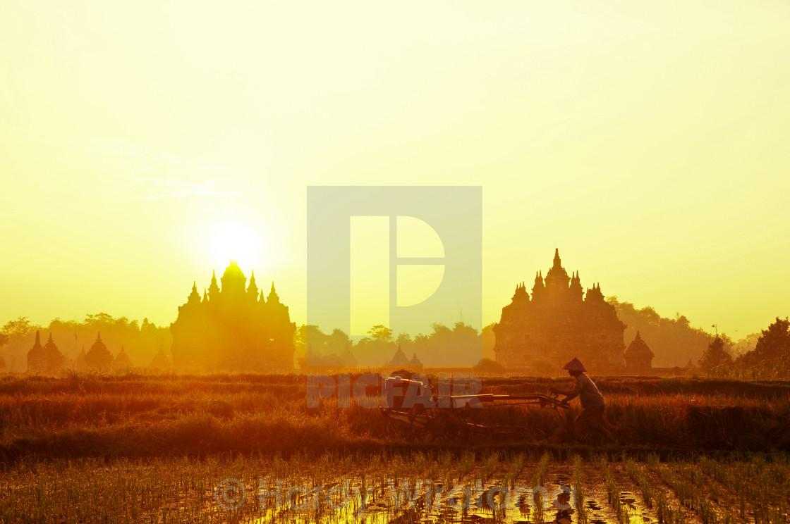 """Morning in Plaosan Temple"" stock image"