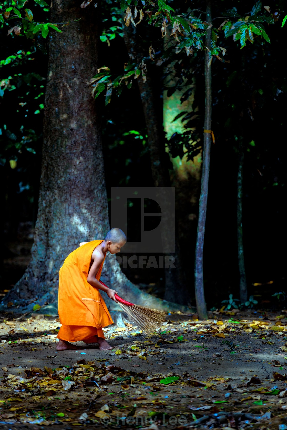"""Monk Sweeping Leaves"" stock image"