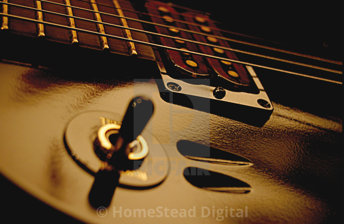 """Humbucking Pickup"" stock image"