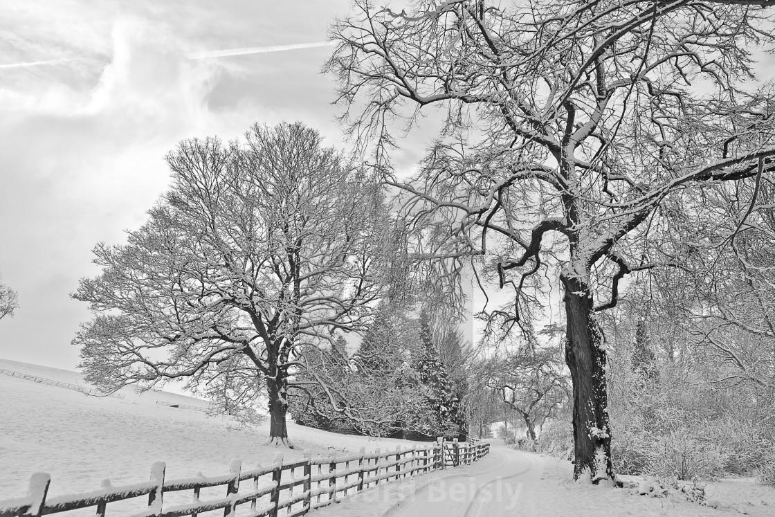"""Winter down the lane"" stock image"