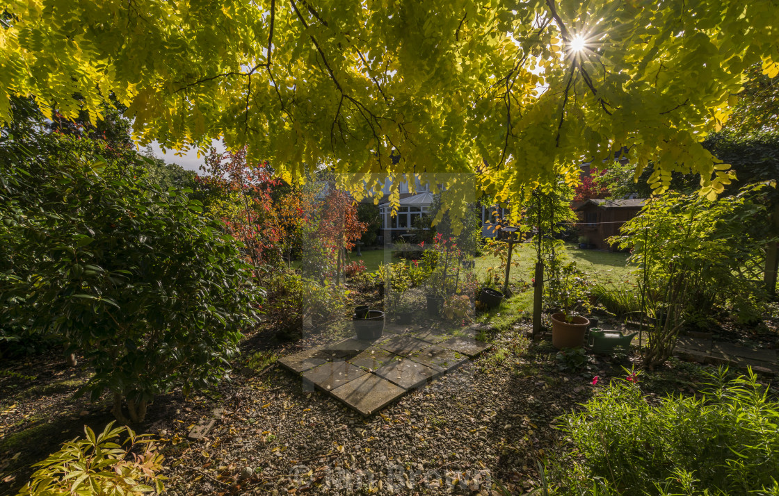 """An autumn scene from an English garden"" stock image"