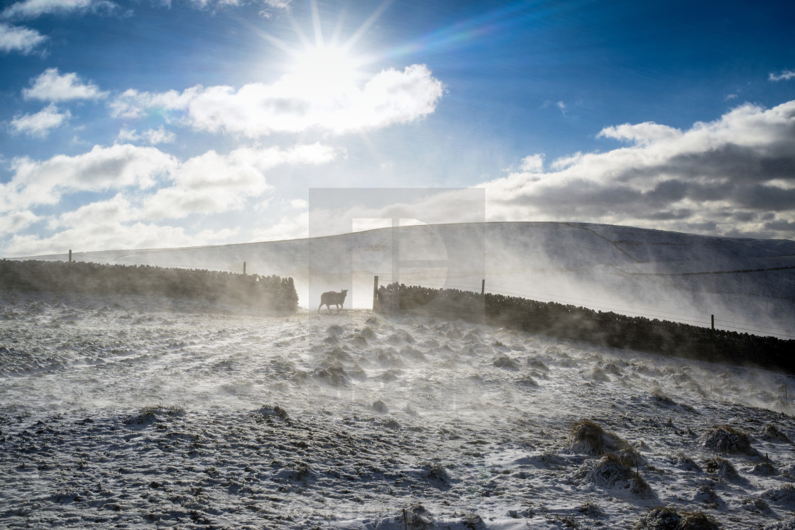 """Hill Farming High Peak Derbyshire,UK."" stock image"