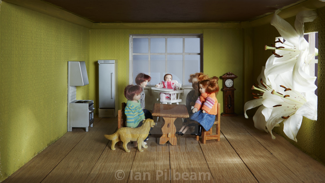 Inside a dolls house with giant flowers in window - License