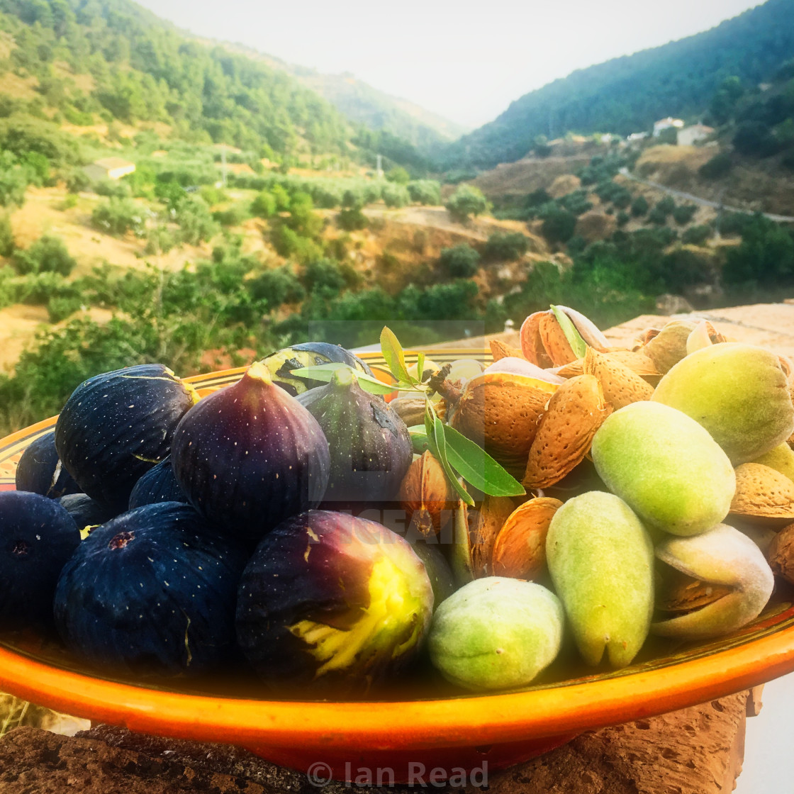"""Autumn Harvest"" stock image"
