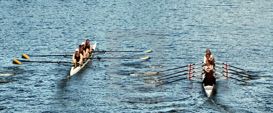 """Boat Race - 5"" stock image"