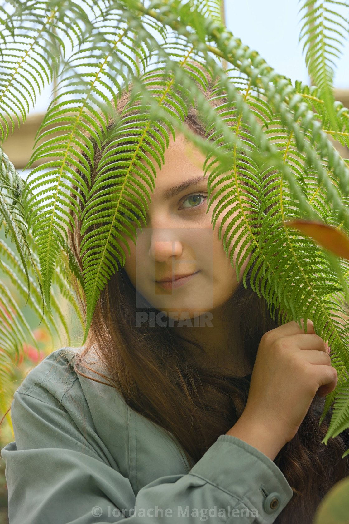 """Teen girl watching through leaves"" stock image"