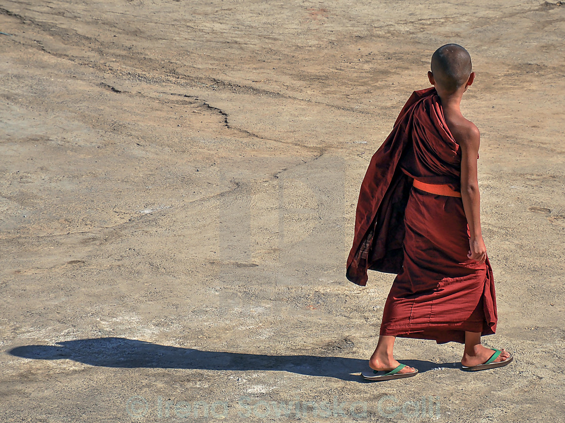 """young monk"" stock image"