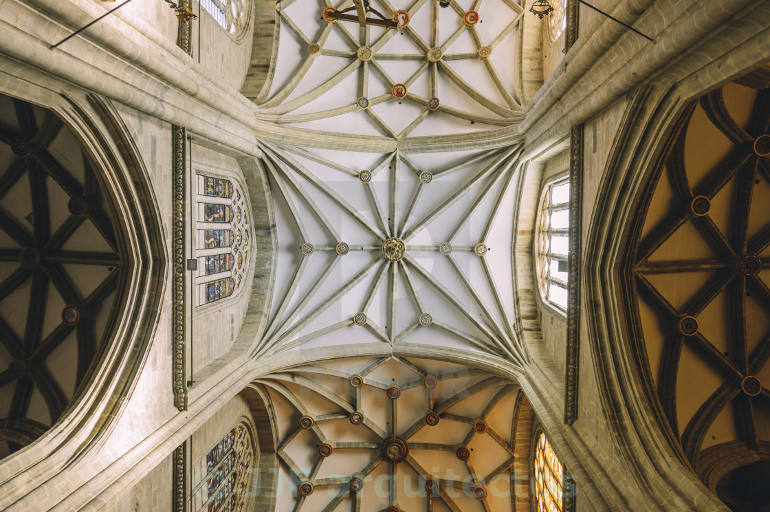 """Cathedral vaults"" stock image"