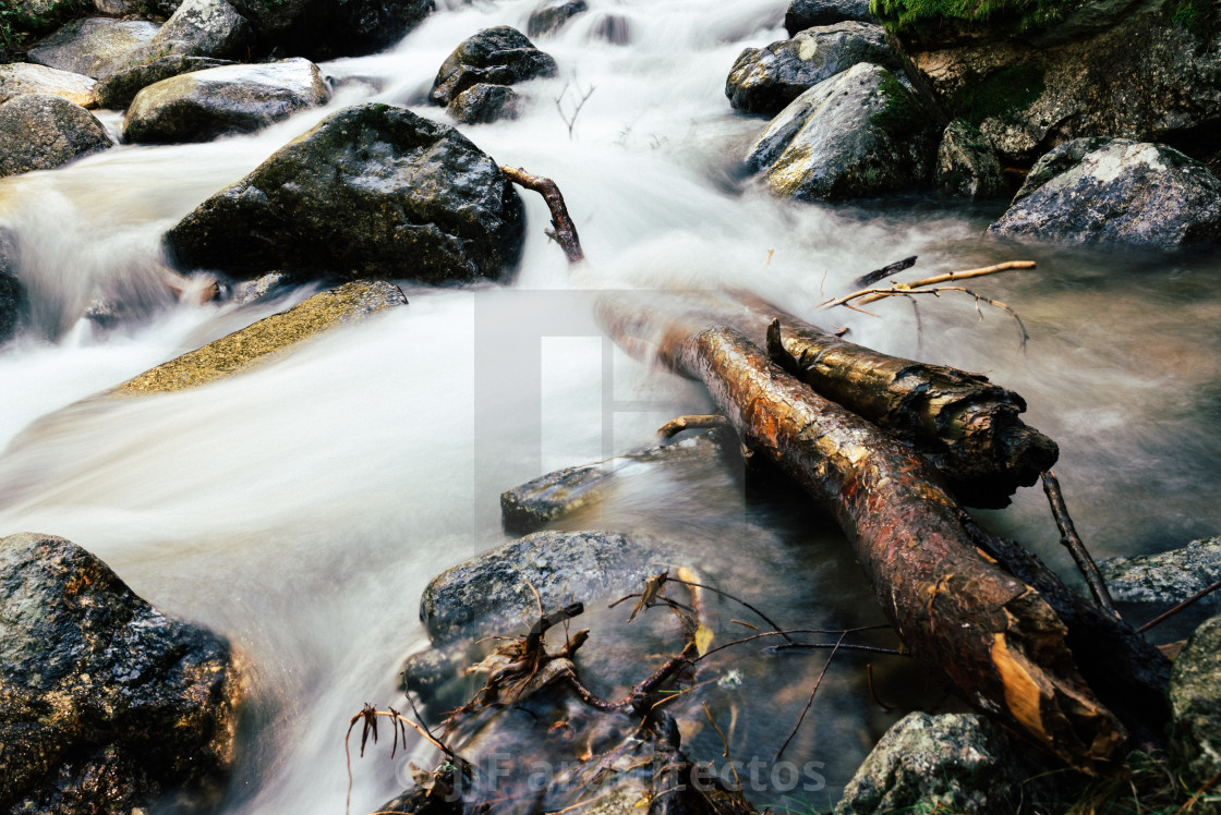 """River of mountain crossing a forest."" stock image"