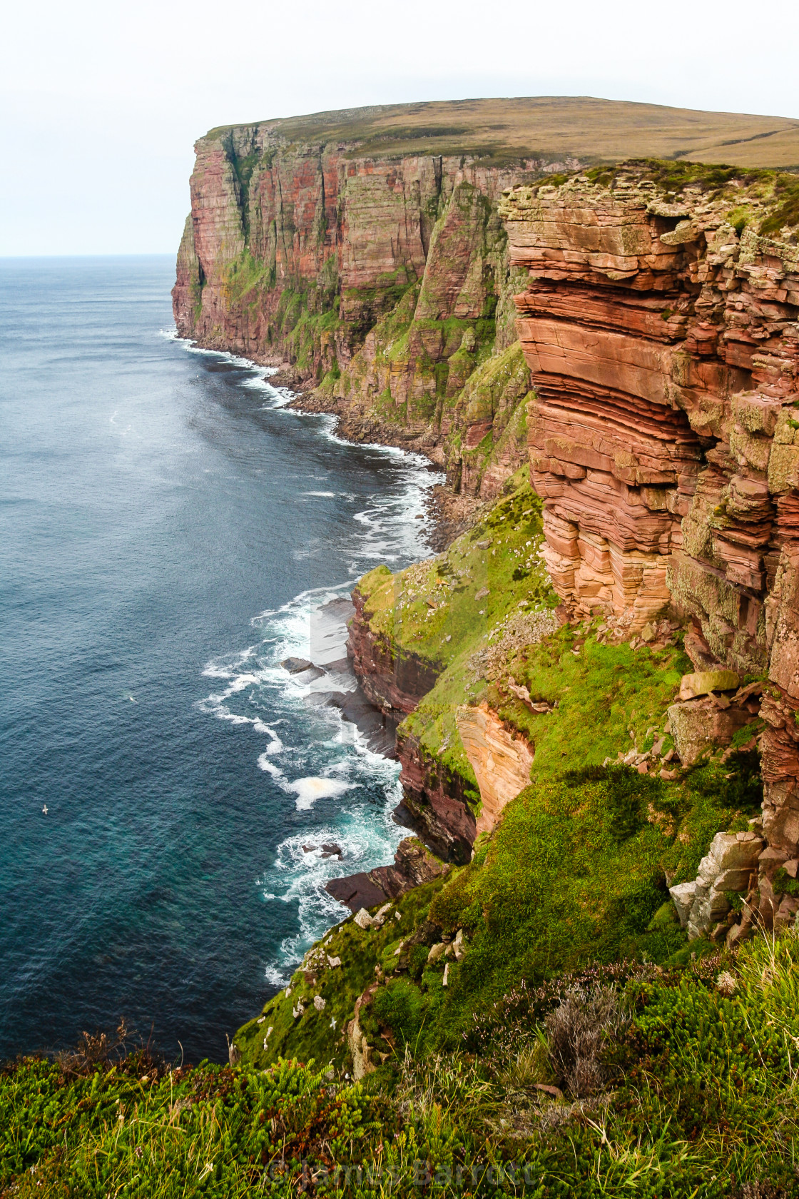 """The cliffs of Hoy."" stock image"