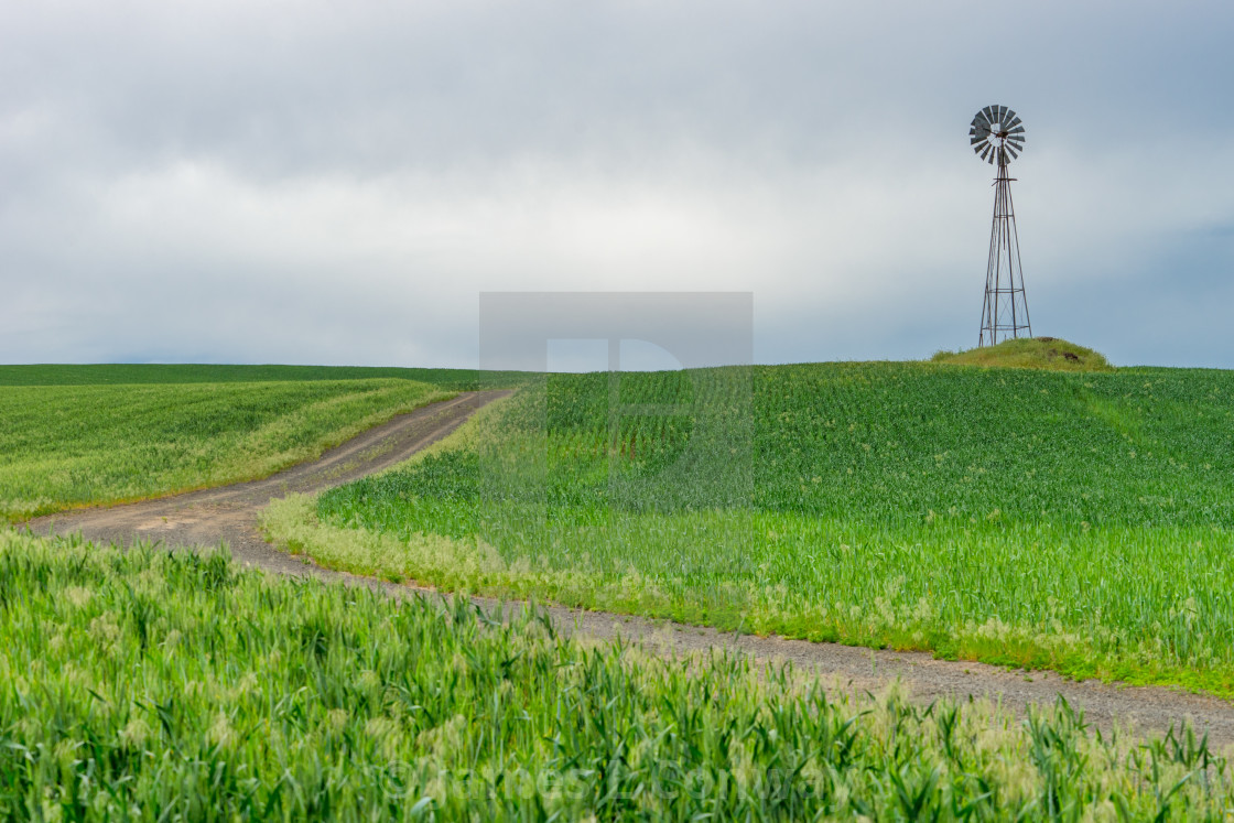 """""""Old Metal windmill in field with a road."""" stock image"""