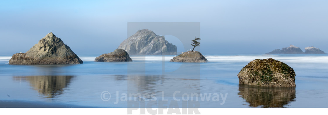 """Tree on a rock on in ocean on Oregon coast"" stock image"