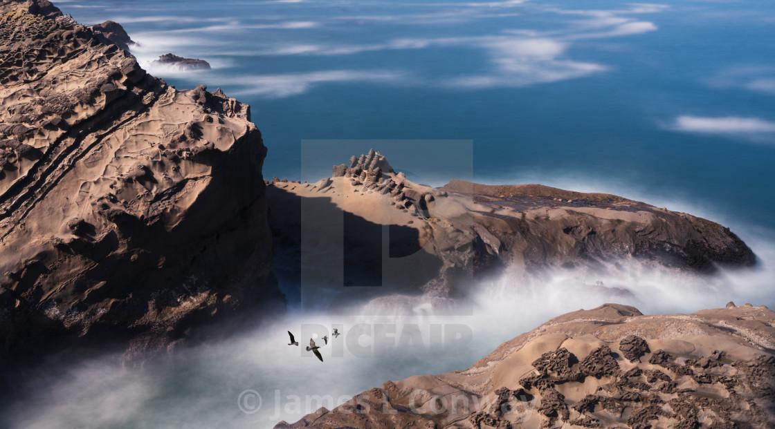 """Birds fly over rocky shore"" stock image"