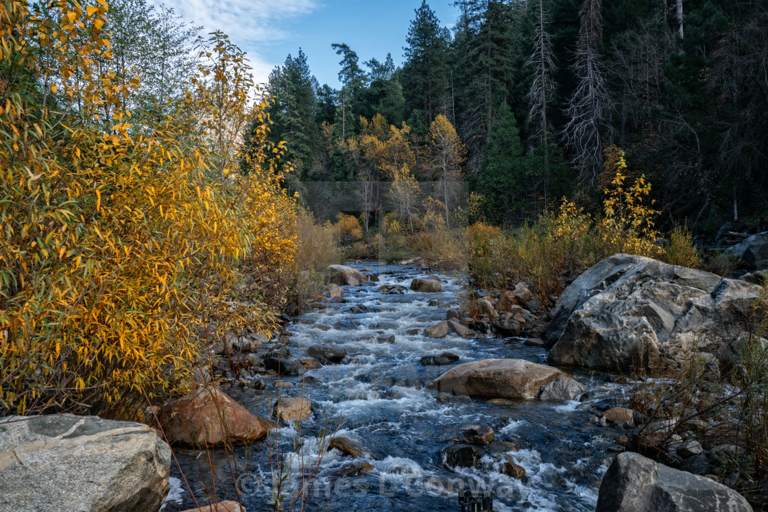 """""""Stream with Fall Colors"""" stock image"""