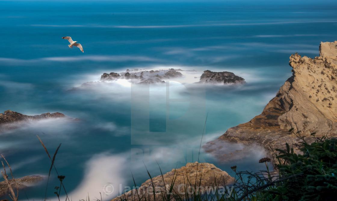 """""""Bird flies over rocky coastline"""" stock image"""
