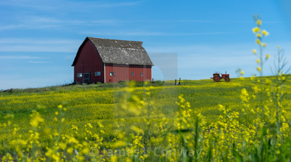 """""""Red barn and tractor"""" stock image"""