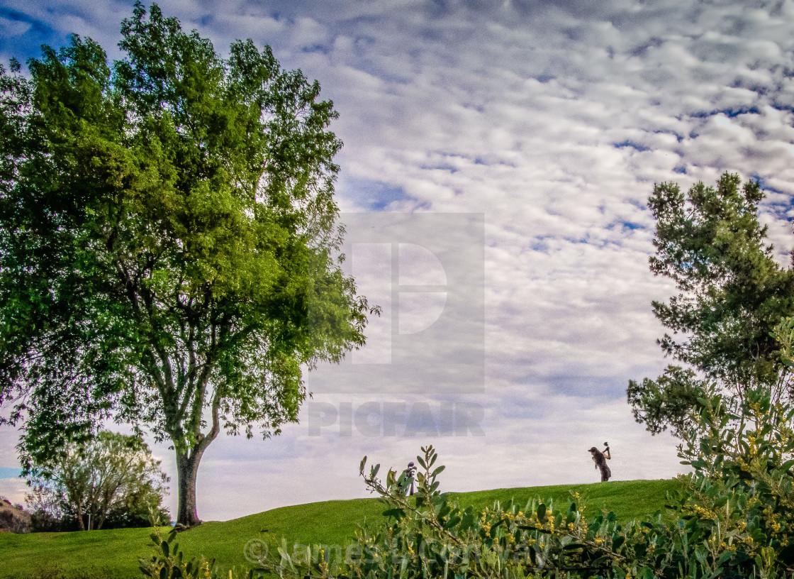 """Golfer Drives"" stock image"