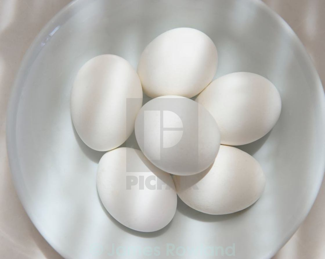 """White eggs in a white bowl"" stock image"