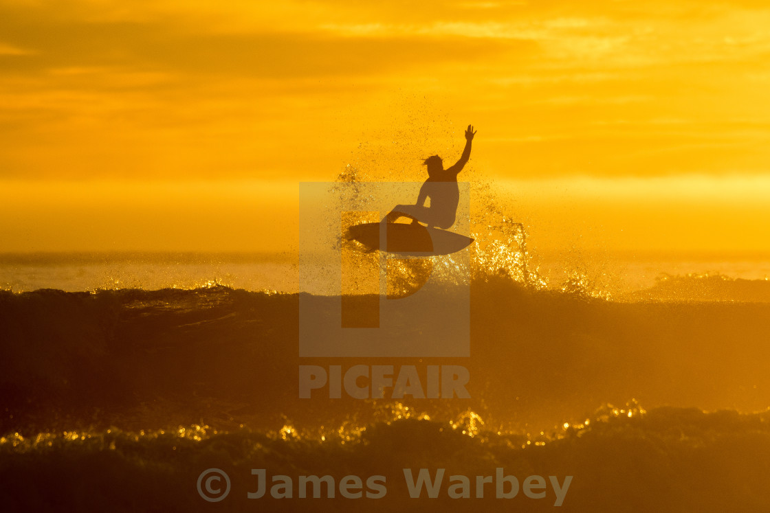 """Golden Flare"" stock image"