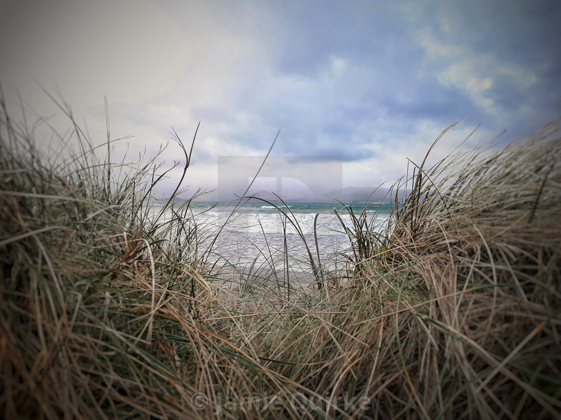 """Brandon Bay through Marram Grass"" stock image"