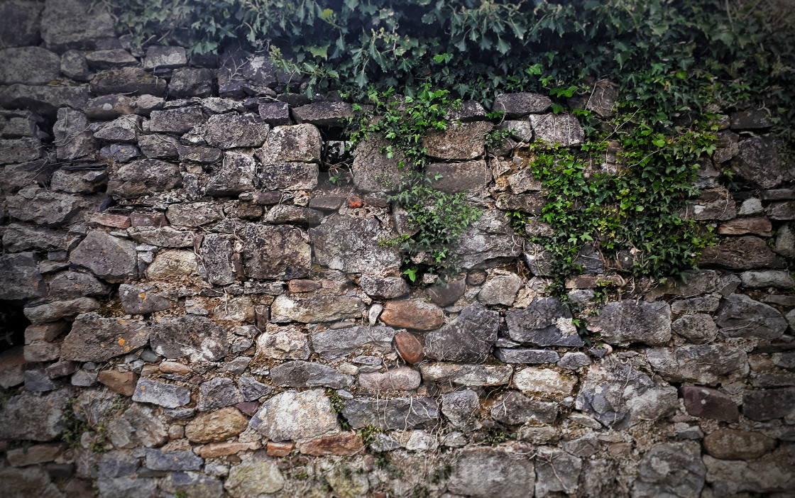 """Old Wall"" stock image"