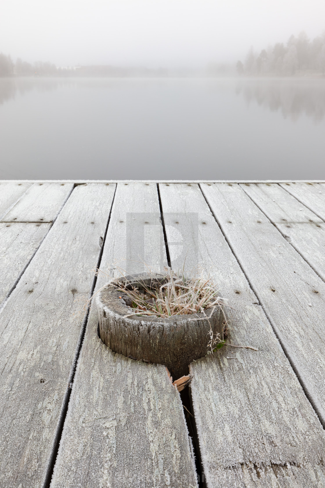 """""""Frosty wooden pier"""" stock image"""