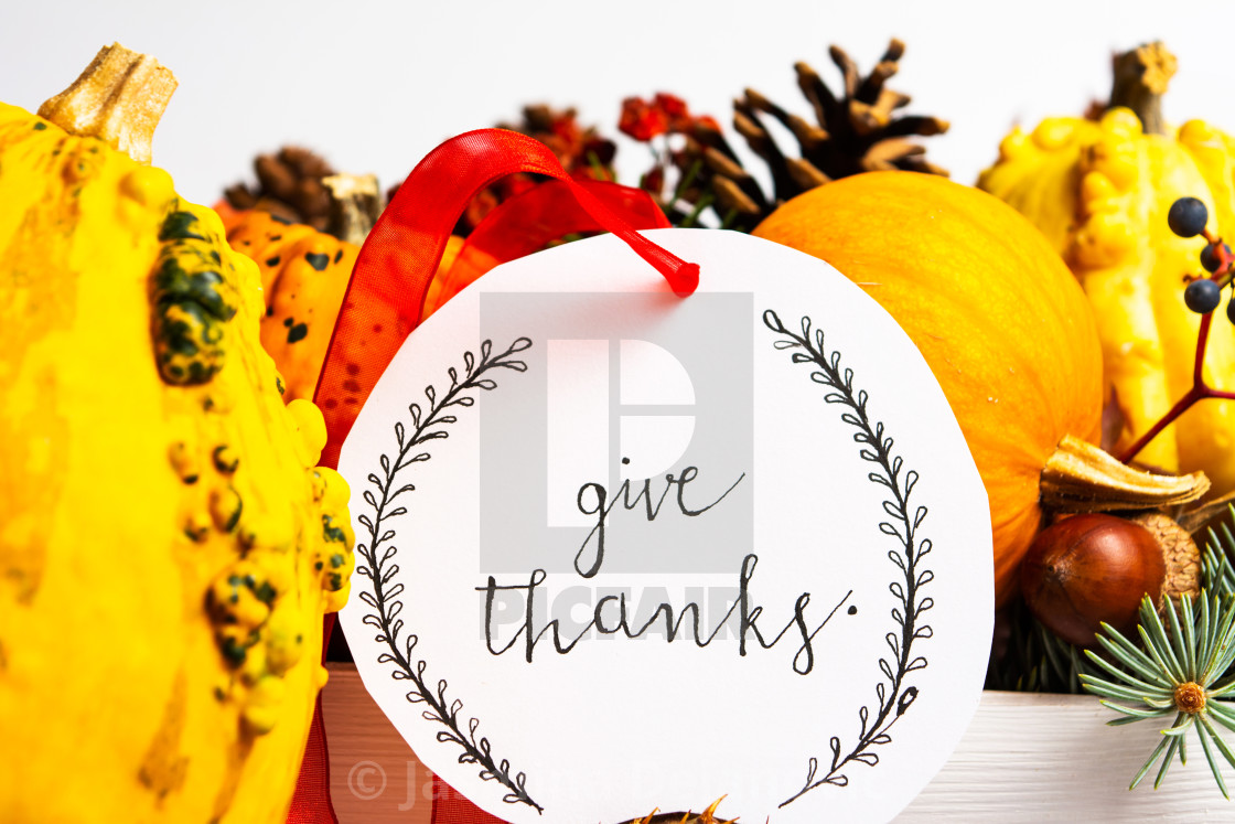 Thanksgiving Day Card With Autumn Decorations License
