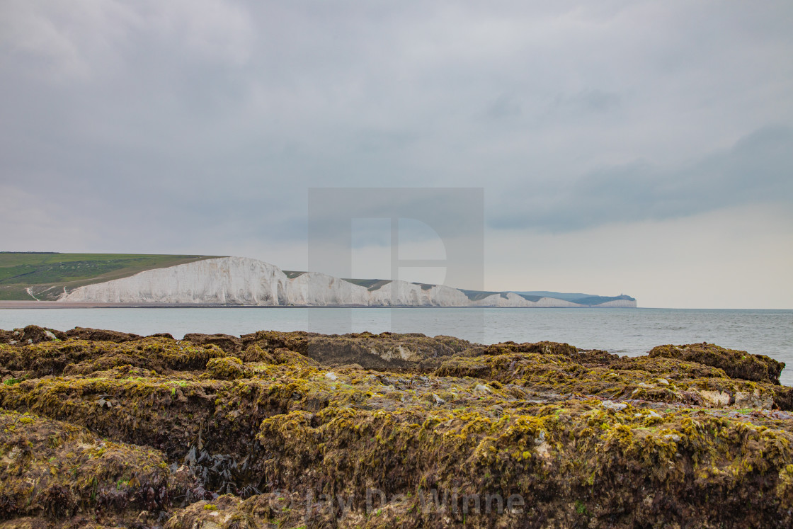 """""""White Chalks Cliffs At Seven Sisters Country Park, England"""" stock image"""