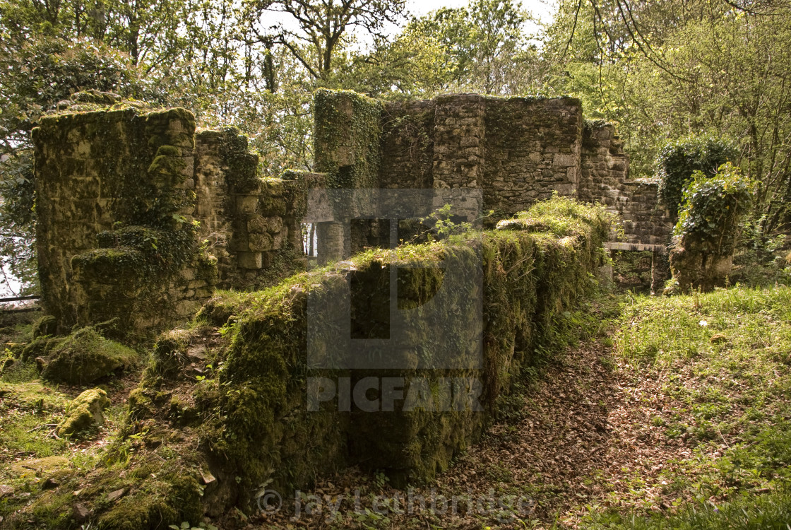 """Remains of Longstone Manor on Dartmoor National Park"" stock image"