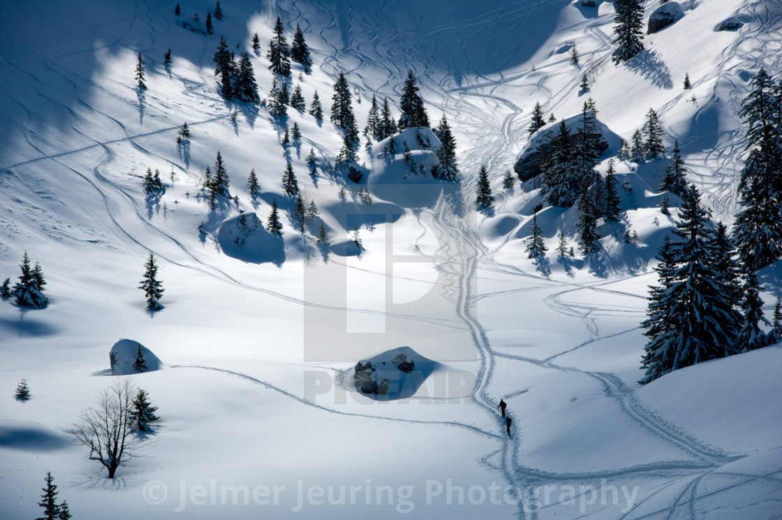 """Alone in the snow"" stock image"