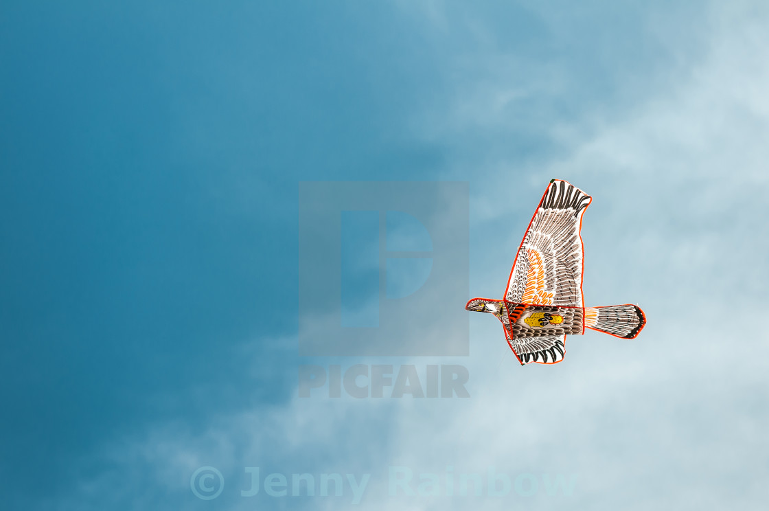 """Bird shaped kite in blue sky"" stock image"