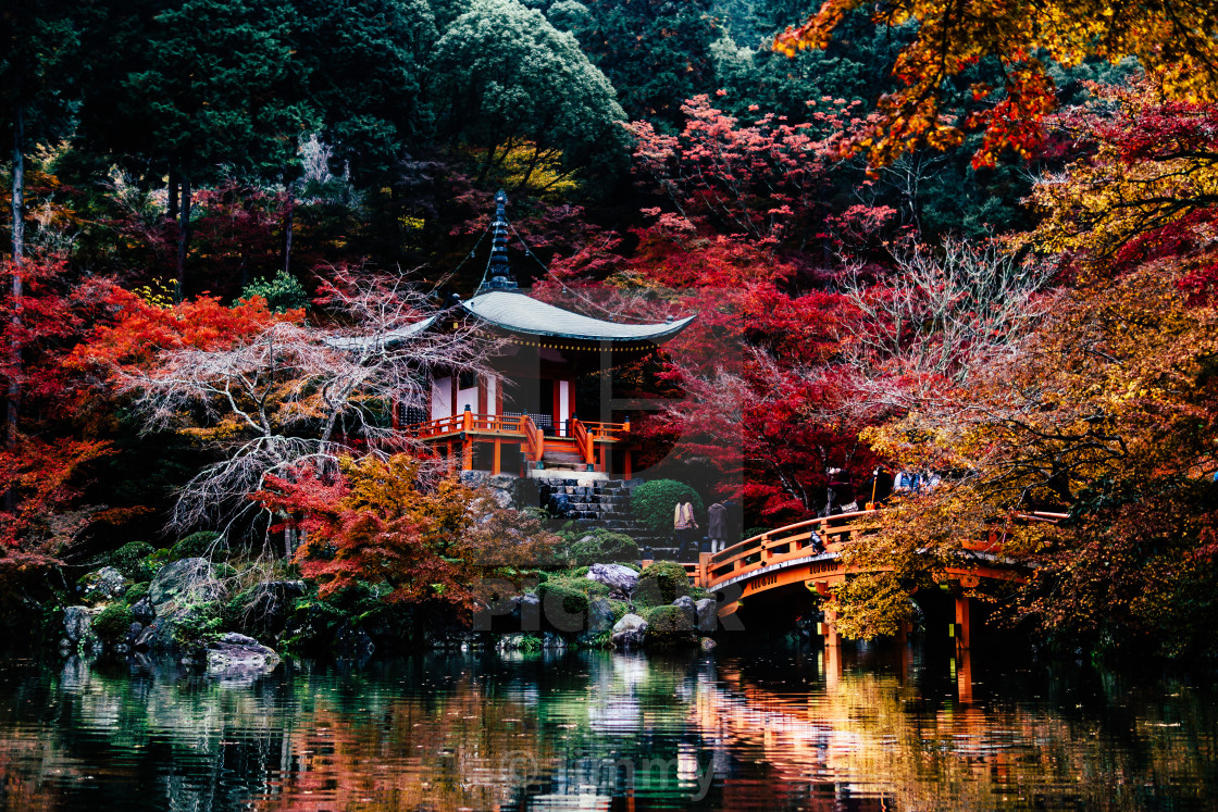 """Fall in Kyoto"" stock image"
