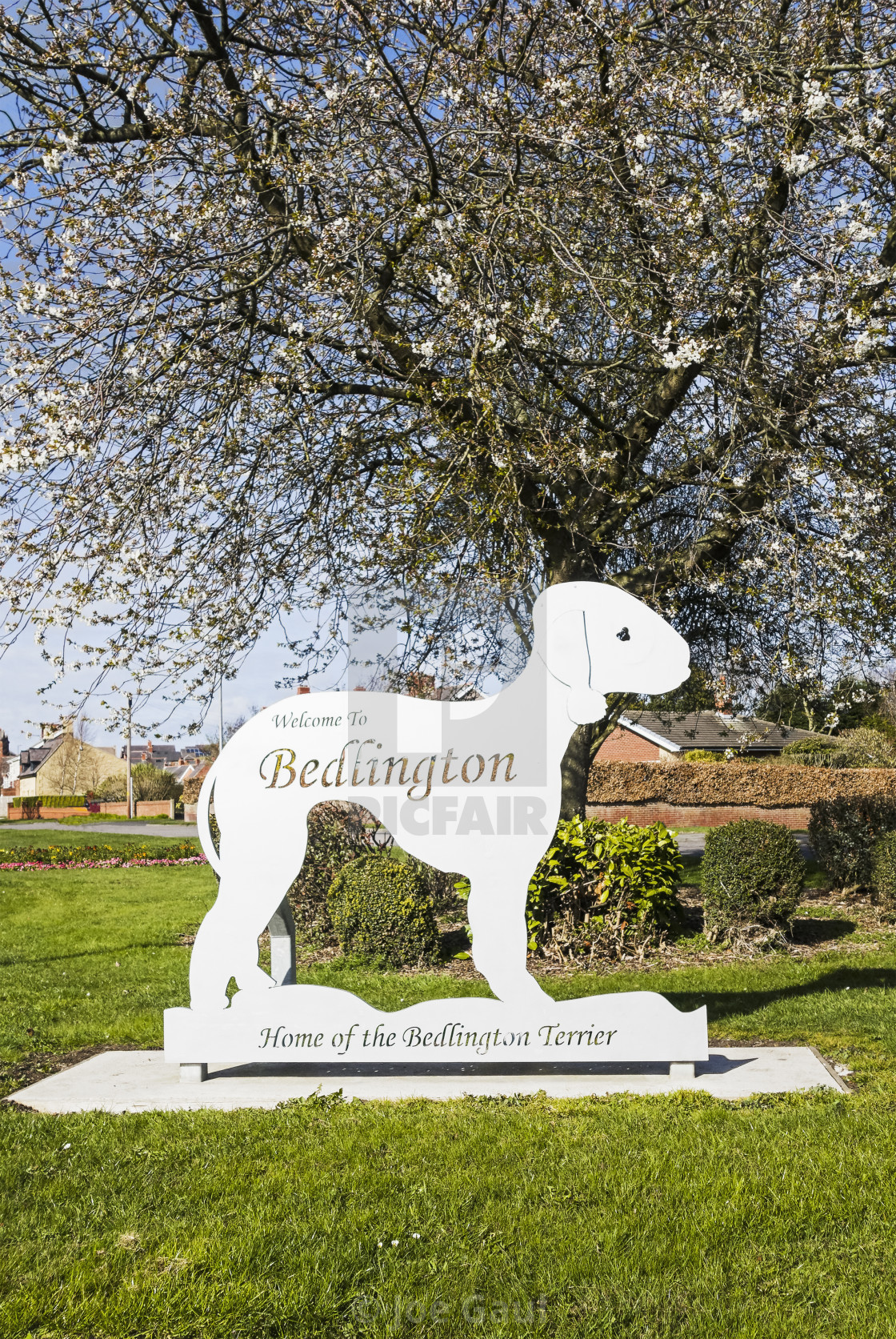 """Bedlington terrier sign at Bedlington, Northumberland, UK"" stock image"