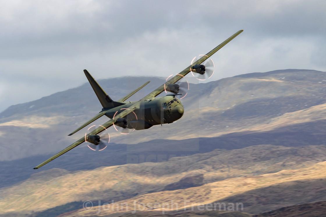 """""""RAF Hercules Ascot Flight"""" stock image"""