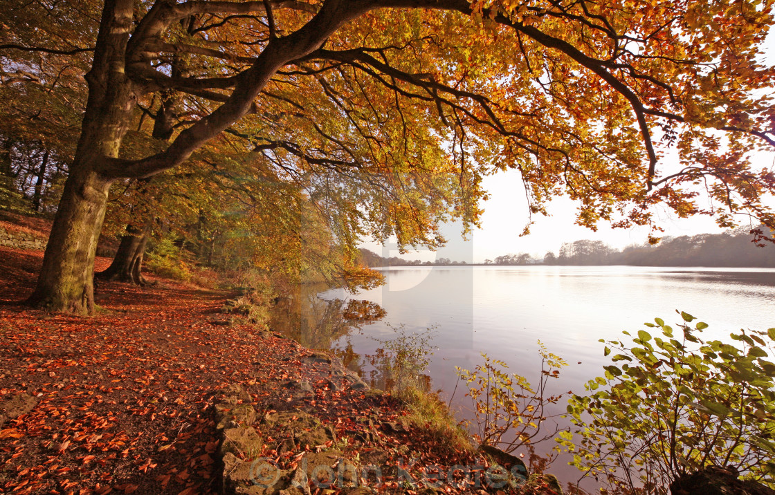 """Knypersley Reservoir, Stoke-on-Trent"" stock image"