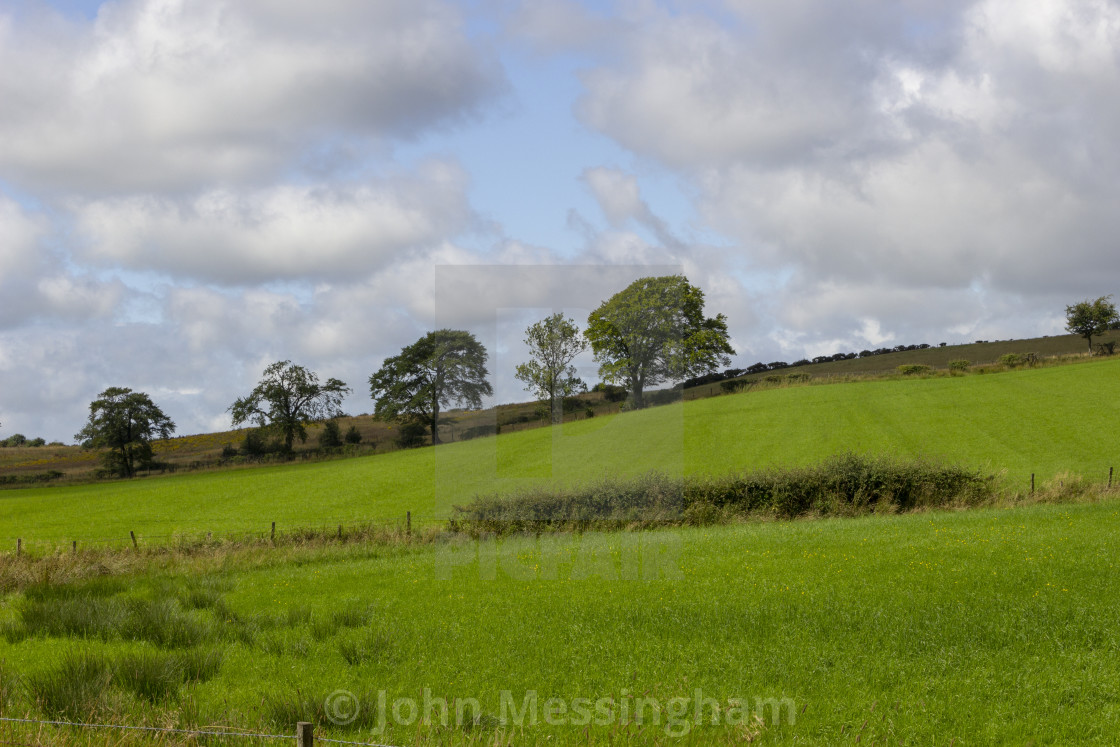 """Fields with trees on the horizon"" stock image"