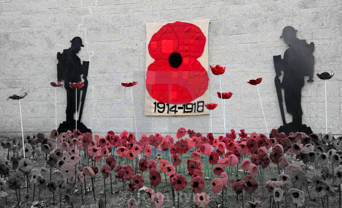 """""""Remembrance display in Great Ayton, North Yorkshire."""" stock image"""