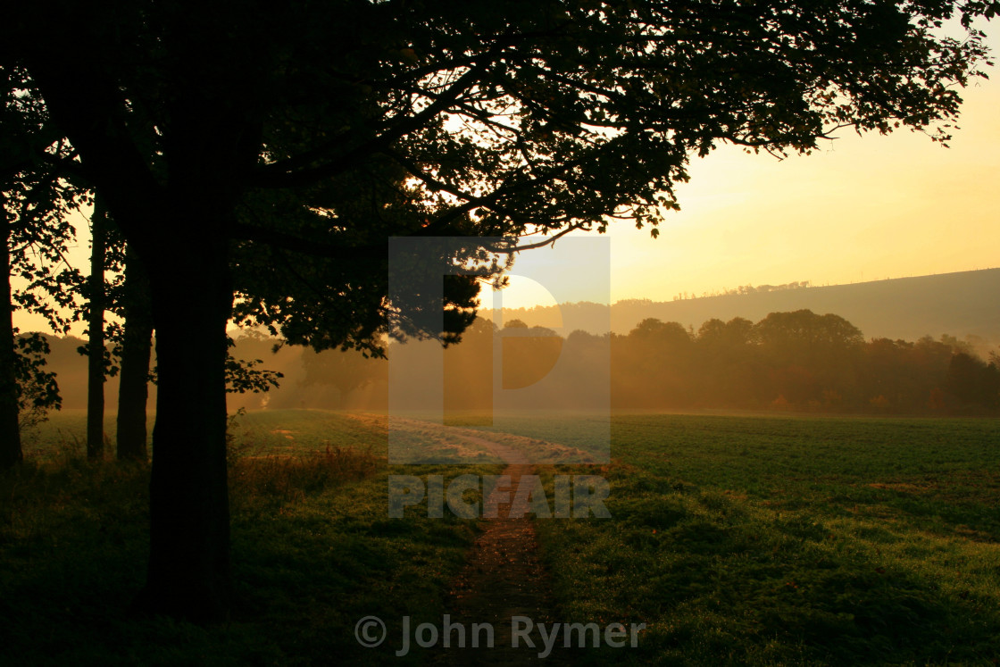 """""""Early sunlight and mist at Guisborough Priory."""" stock image"""