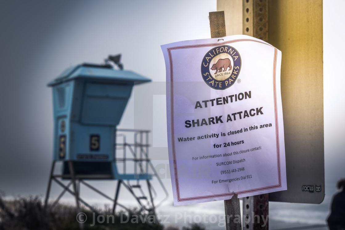 """Shark Attack"" stock image"